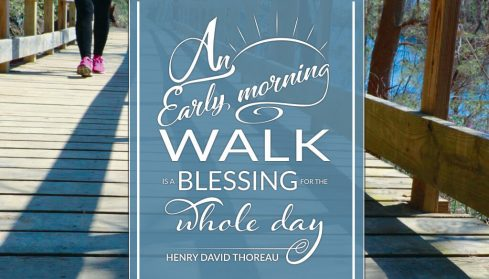 Read more about Walking on Sunshine